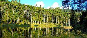 Camanducaia, Brazil