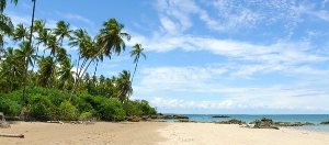 Ilha de Boipeba, Brazil