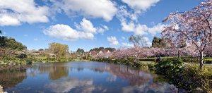 Palmerston North, New Zealand