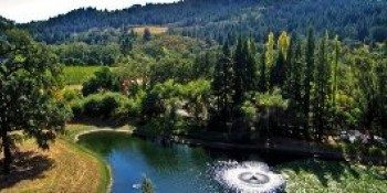 Saint Helena, California, United Sates